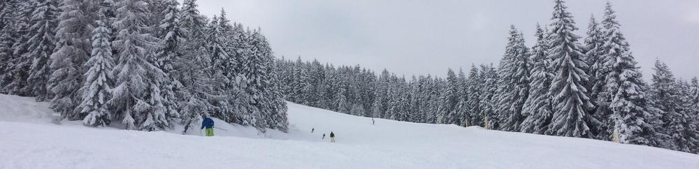 SuW: 2-Tages-Skifahrt nach Schladming